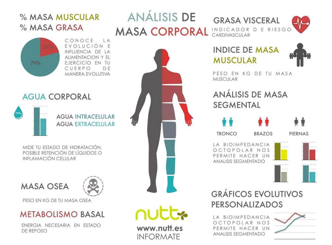 Estudio antropométrico antropometría composición corporal Valencia